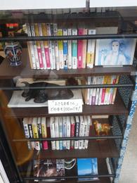 fukuda_meichaen.jpg