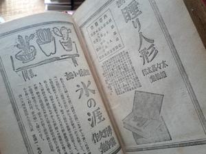 kankousen5.jpg