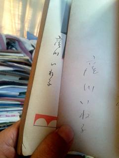 kubokawaineko.jpg