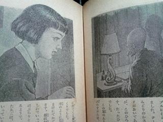 marukakudaihachi.jpg