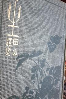sei_katai.jpg